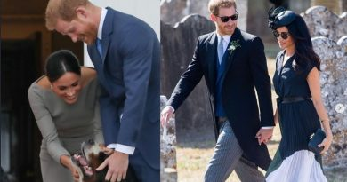 Meghan Markle and Prince Harry get a dog