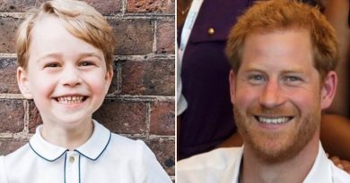 Royal Family: Prince George - Prince Harry