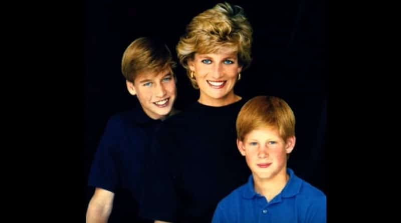 Princess Diana - Prince William - Prince Harry