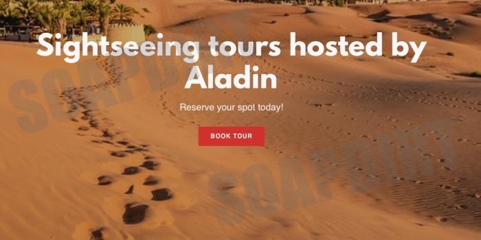 90 Day Fiance: Aladin Jallali - Business