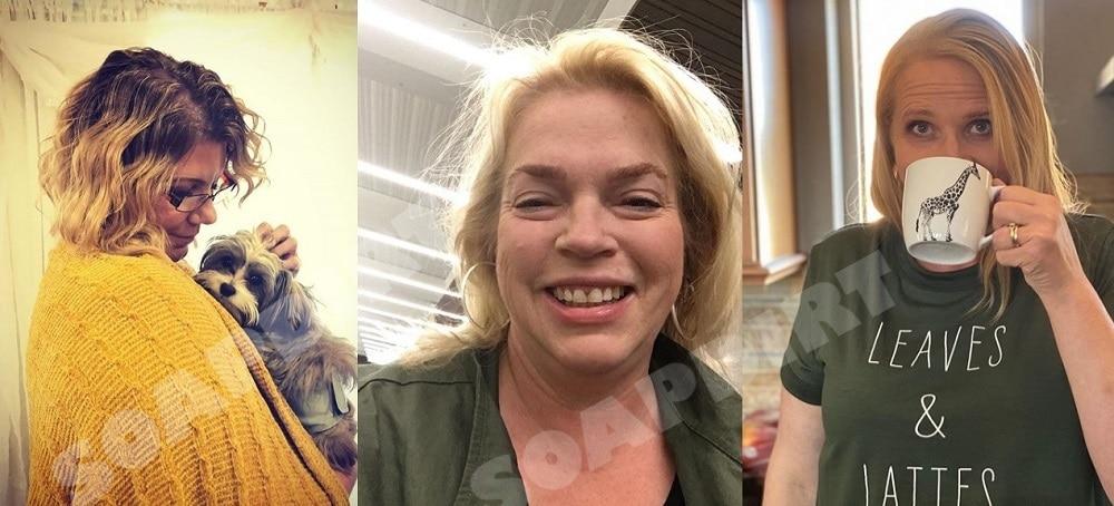 Sister Wives: Meri Brown - Janelle Brown - Christine Brown