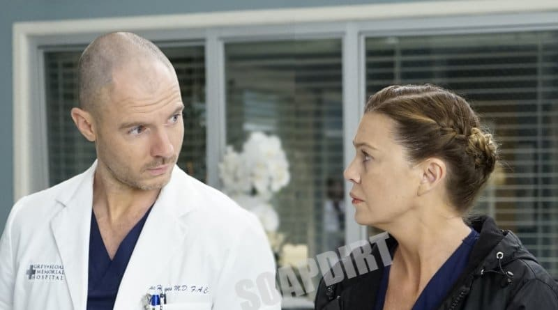 Greys Anatomy: McWidow - Cormac Hayes (Richard Flood) - Meredith Grey (Ellen Pompeo)