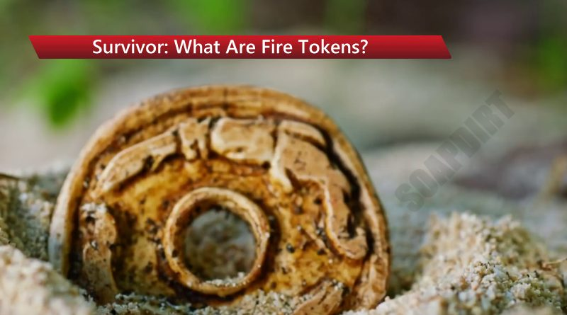 Survivor: Fire-Token - What Are Fire Tokens? - Winners at War