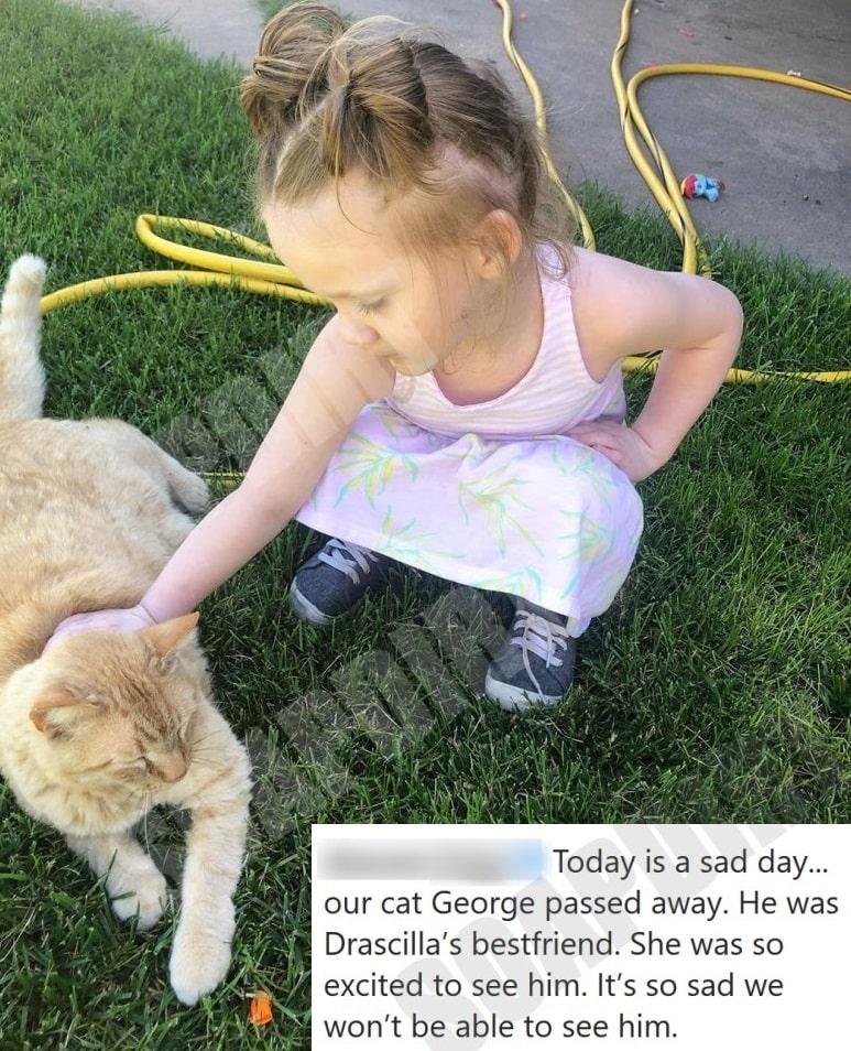 90 Day Fiance: Drascilla Clegg - cat - Deavan Clegg