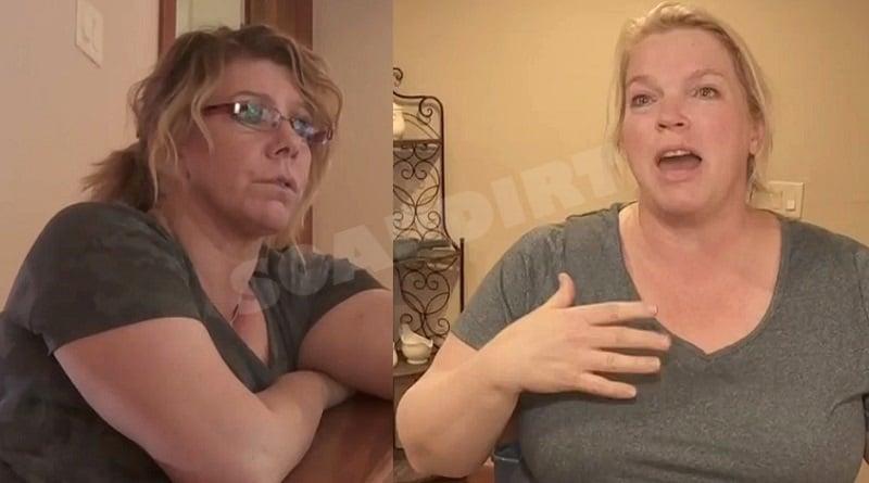 Sister Wives: Meri Brown - Janelle Brown