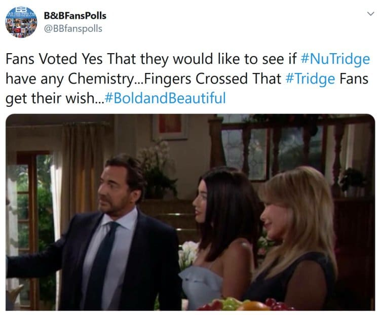 Bold and the Beautiful: Taylor Hayes (Hunter Tylo) - Ridge Forrester (Thorsten Kaye) - Steffy Forrester (Jacqueline MacInnes Wood)