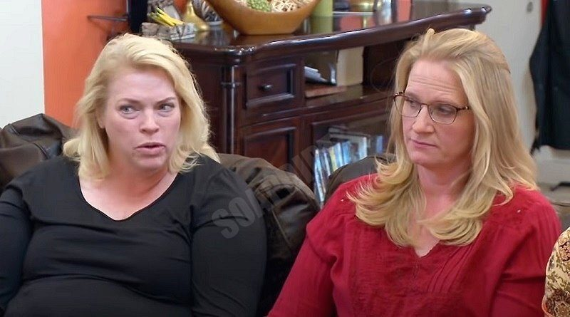 Sister Wives: Janelle Brown - Christine Brown