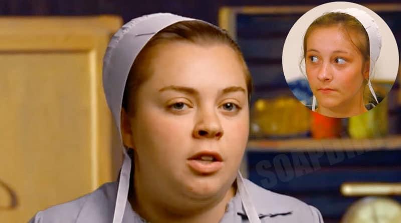 Return to Amish: Maureen Byler - Rosanna Miller