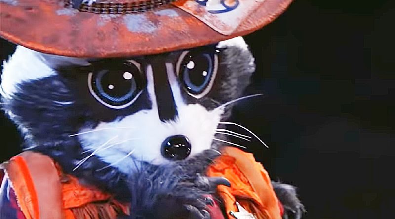The Masked Singer: The Raccoon