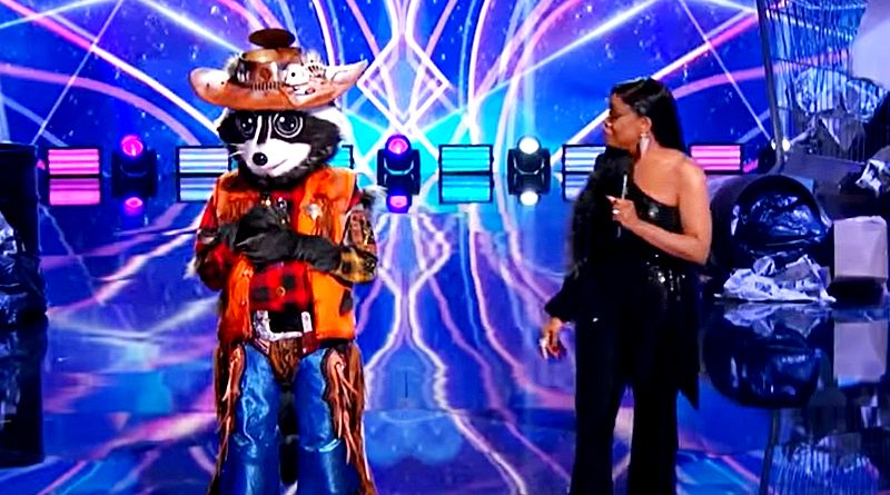 The Masked Singer: The Raccoon - Niecy Nash